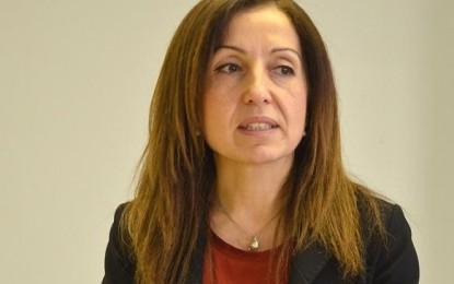 Filiz Demirel'den seçim açıklaması